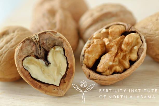 Walnuts for Boosting Fertility